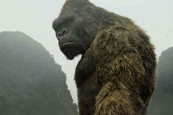 'Phim Kong mà không về con vật thì có khi không được quay ở Việt Nam'