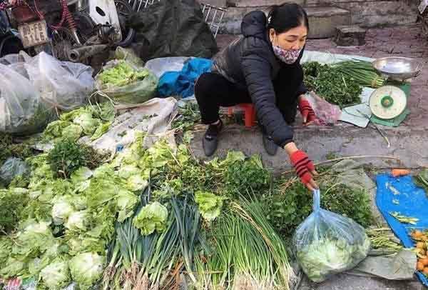 Hưng Yên: 200.000 đồng/kg ớt, rau xanh tăng giá chóng mặt ngày 30 Tết