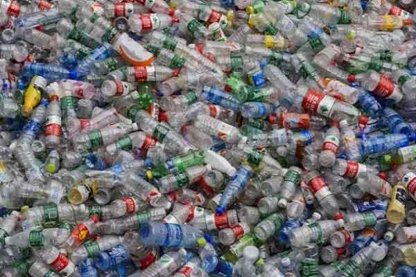 Tìm ra tổ hợp vi khuẩn 'ăn' nhựa hiệu quả