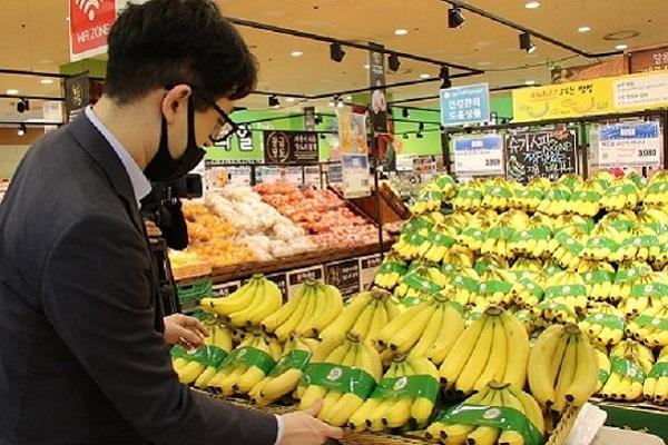 Hàn Quốc khó trồng chuối, cơ hội lớn cho Việt Nam
