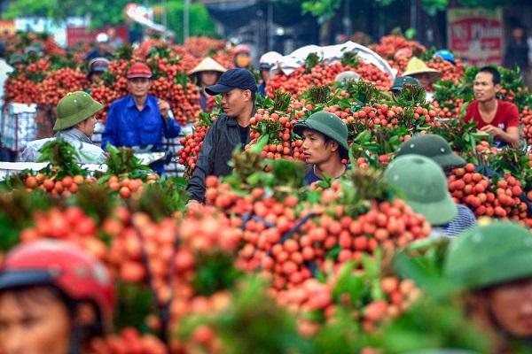 Nông sản Việt Nam cần biến nguy cơ thành thời cơ trong đại dịch COVID-19