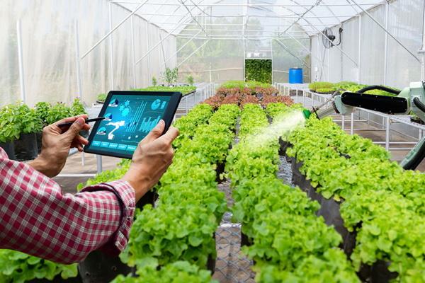 Nông nghiệp của tương lai: Cuộc cải cách của công nghệ (Phần 2)