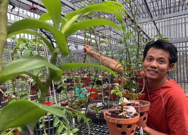 Chủ vườn lan 60 tỉ nói về giá trị thật của lan đột biến