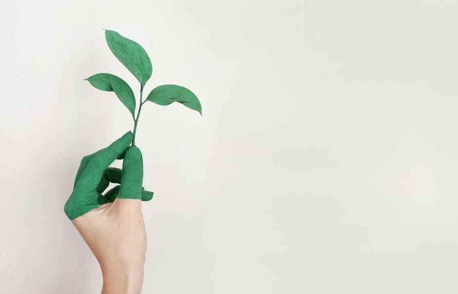 Lối sống xanh giản dị của giới trẻ: Từ các trào lưu cộng đồng trở thành thói quen hàng ngày
