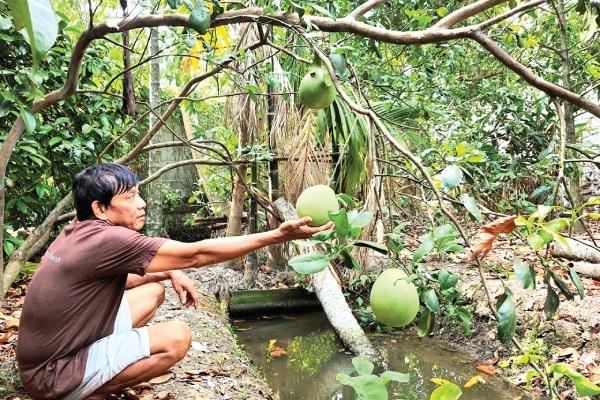 Phát triển du lịch sinh thái trở thành thế mạnh du lịch
