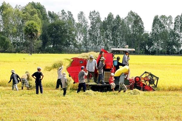 Châu Á gặp khó khi xuất khẩu nông sản vì Covid 19 bùng phát lại