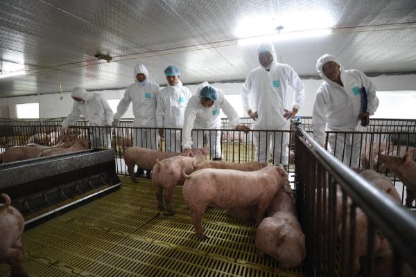 Thịt nóng và thịt mát - Cuộc chiến của khẩu vị