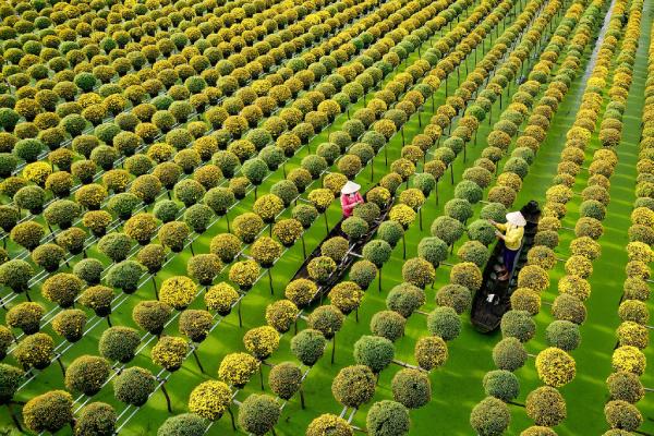 """Thương hiệu """"quốc gia an toàn"""" sẽ là đòn bẩy để ngành du lịch Việt Nam phục hồi"""