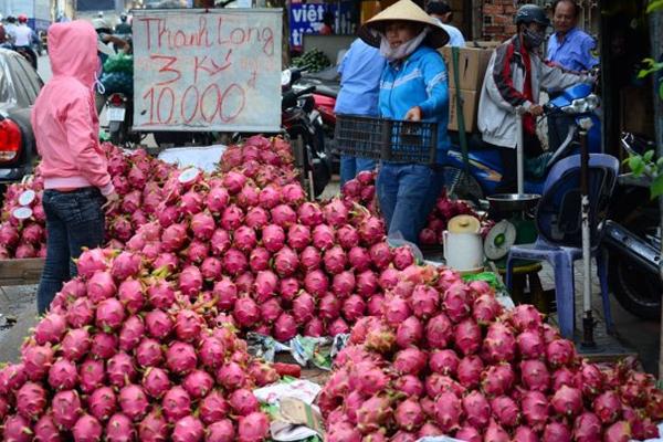 Lòng vòng con đường xuất khẩu nông sản sang Trung Quốc