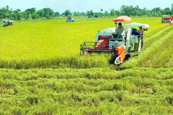 Cứ mỗi ngày trôi qua, ngành nông nghiệp thu về thêm 110 triệu USD