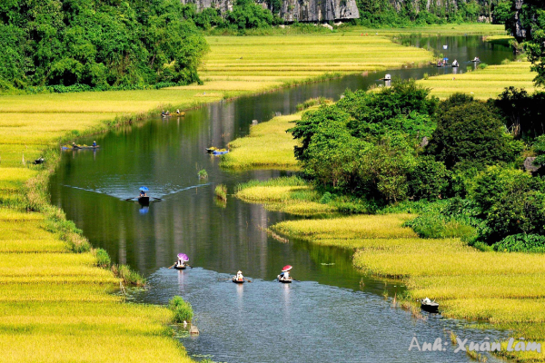 Cùng khám phá vẻ đẹp Việt Nam - Đi Để Yêu với những người nổi tiếng