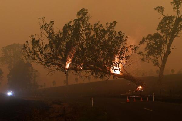 Mưa lớn xuất hiện ở Australia, hạ nhiệt vụ cháy rừng