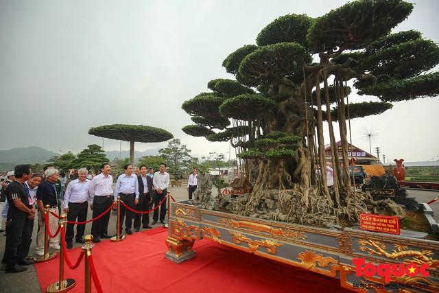 52 quốc gia tham dự Lễ hội sinh vật cảnh châu Á - Thái Bình Dương