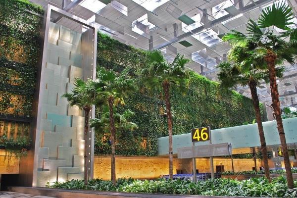 """5 """"biểu tượng xanh"""" đáng tự hào tại sân bay Changi (Singapore)"""
