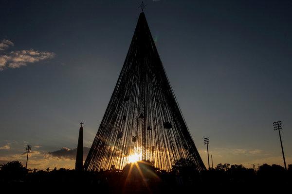 Chiêm ngưỡng những cây thông Giáng sinh đặc sắc nhất thế giới