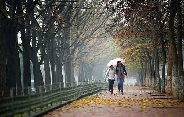 Mẹo phòng tránh những bệnh dễ gặp mùa gió mùa cho cả nhà