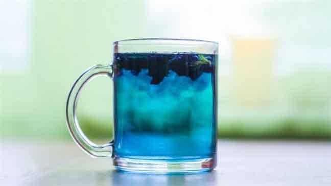 Chớm thu thưởng thức ly trà hoa đậu biếc