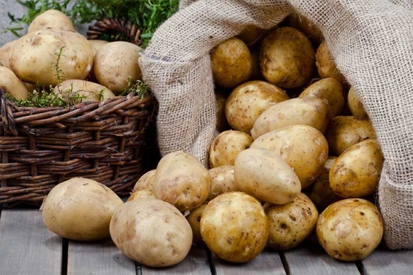 Những loại thực phẩm cần lưu ý khi bảo quản trong tủ lạnh lâu ngày