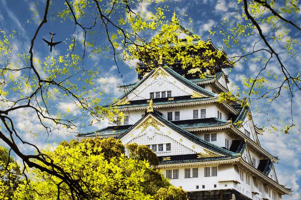 Nhật Bản - nơi có những mô hình kinh doanh đặc sắc nhất