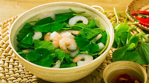 Bạn có biết rau má chữa suy giãn tĩnh mạch?