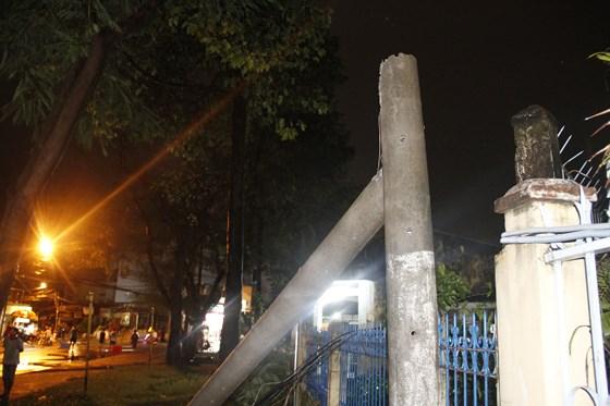 Cơn mưa lớn kèm gió mạnh làm bật gốc cây cổ thụ cao gần 20m
