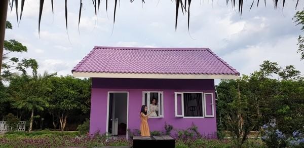 Ngôi nhà màu tím ở Cần Thơ thu hút hàng trăm lượt khách mỗi ngày