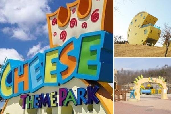 Công viên chủ đề phô mát có thật ở Hàn Quốc