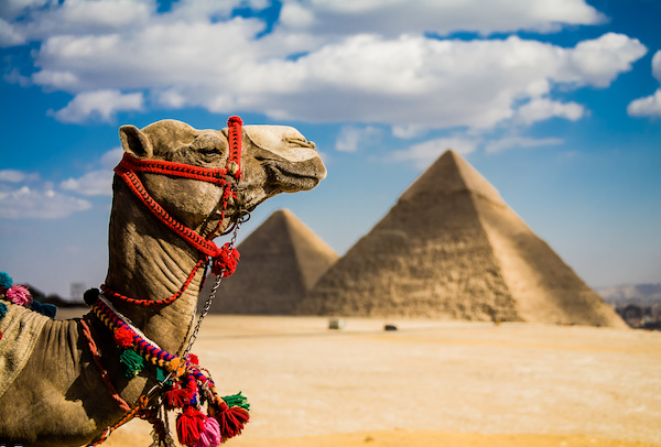 Lạc lối giữa Ai Cập hùng vĩ