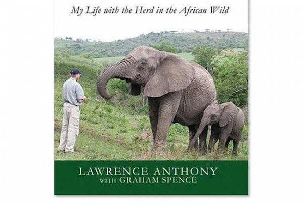 3 quyển sách thúc đẩy hành trình chinh phục Châu Phi của bạn