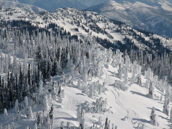 Ngỡ ngàng với Giáng sinh trắng ở Montana