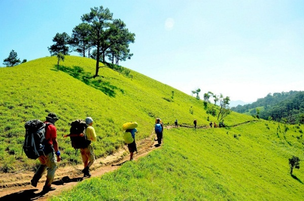 Trải nghiệm phượt Zipline giữa rừng ở Bảo Lộc