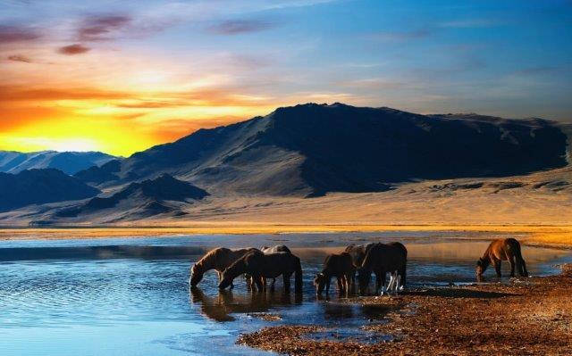 10 bức hình khiến bạn muốn xách balo lên và đi ngay tới Mông Cổ