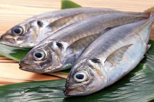 Mẹo làm cá cực nhanh của người Nhật