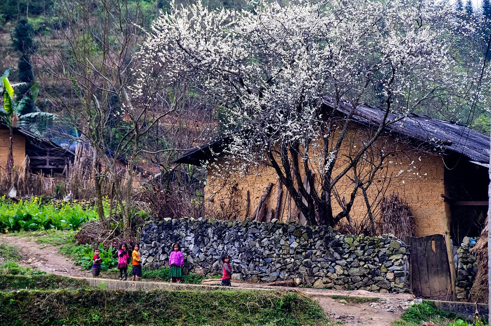 Quê Hương là gì hở Mẹ? (Kỳ 8) | Chuyện mùa Đông - Đàn Tranh: NSƯT Hải Phượng