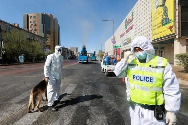 Một thành phố Trung Quốc ban hành cảnh báo dịch hạch