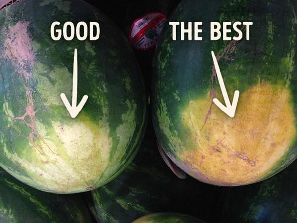 Mẹo chọn dưa hấu đúng chuẩn ngon