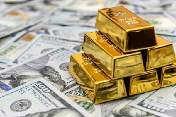 Giá vàng tiếp tục rơi tự do, người mua lỗ 7 triệu chỉ sau 3 ngày