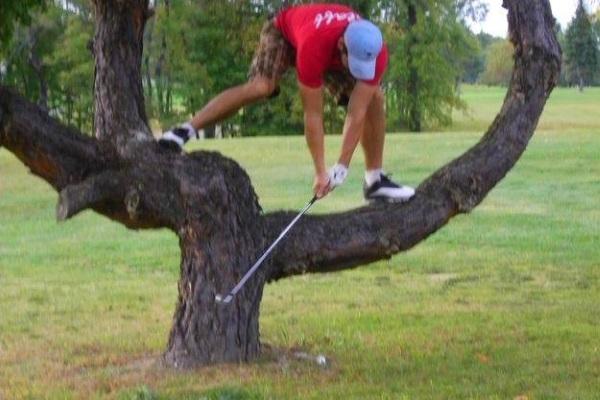 Thư giãn cùng những bức ảnh golf vô cùng hài hước