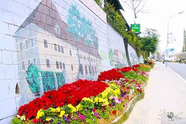 Đường hoa rực rỡ và đẹp mắt trước thềm Festival hoa Đà Lạt