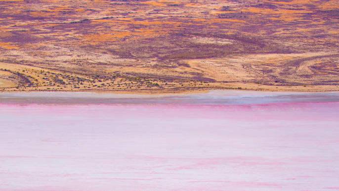 Sau mưa tại Australia, một hồ nước lớn đổi màu tuyệt đẹp