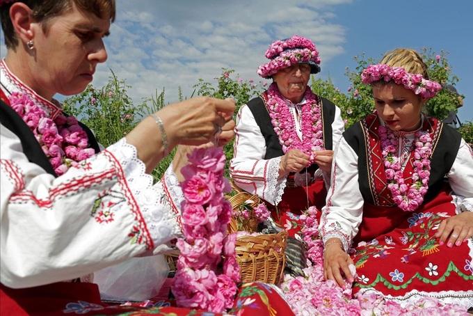 Bị mê hoặc bởi thung lũng hoa hồng ở Bulgaria