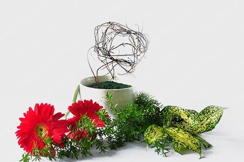 Cắm hoa đẹp thể hiện khí chất của người yêu hoa