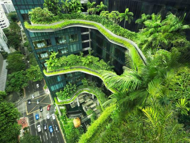Khám phá vẻ xanh ngắt như vườn treo một khách sạn ở Singapore