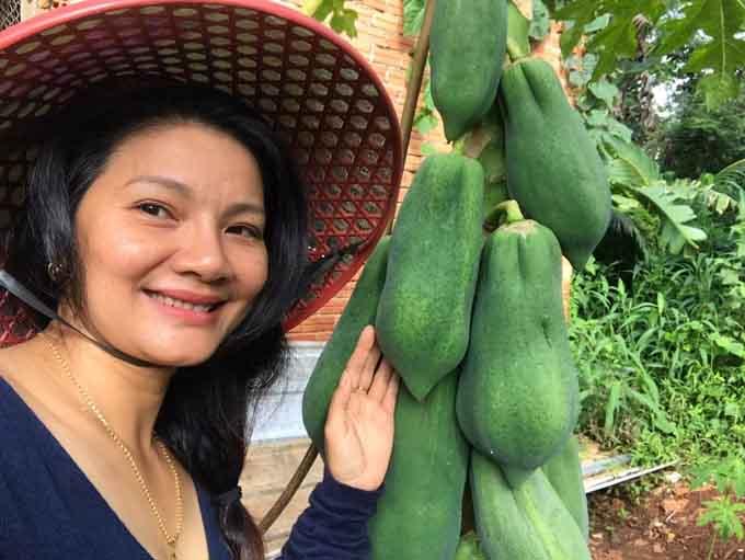 Ngắm vườn cây nhiều hoa trái của diễn viên Kiều Trinh