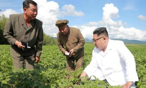 Ngoại trưởng Mỹ ghé thăm - Kim Jong-Un lại ở trang trại khoai