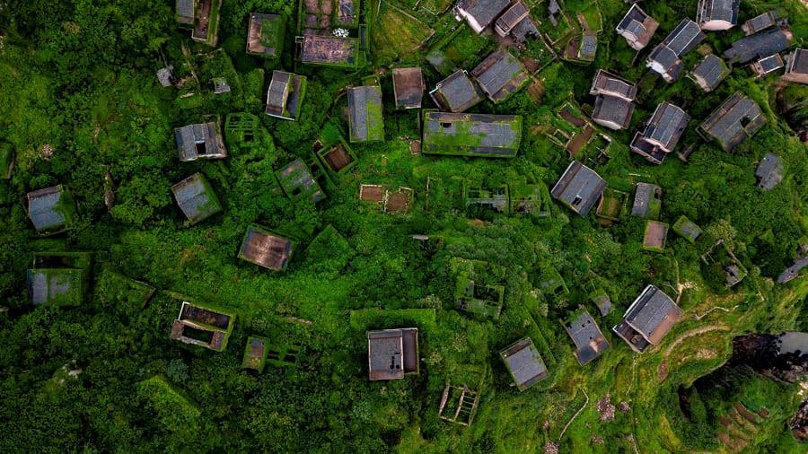 """Ngôi làng """"rêu xanh"""" ngày càng nổi tiếng vì bị con người lãng quên"""