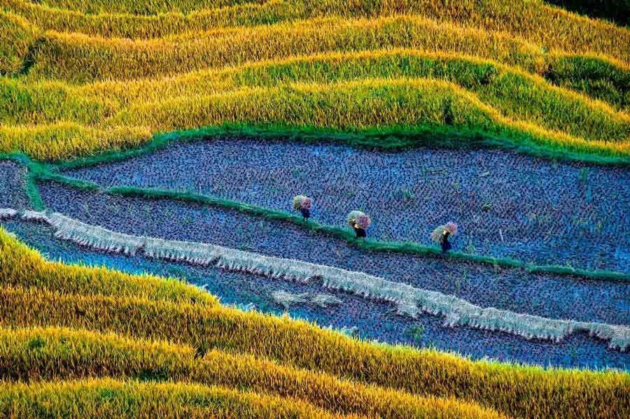 Triển lãm ảnh Di sản Việt Nam 2018 giới thiệu 107 tác phẩm xuất sắc nhất