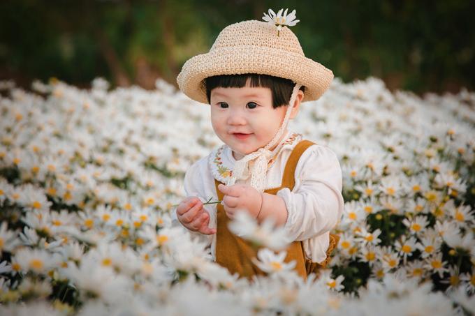 Hình ảnh đáng yêu của một em bé khi chụp hình với cúc họa mi