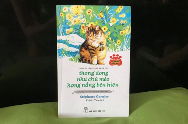 Thong dong như chú mèo hong nắng bên hiên: Những bài học từ sự bình thản, tinh tế và chậm rãi