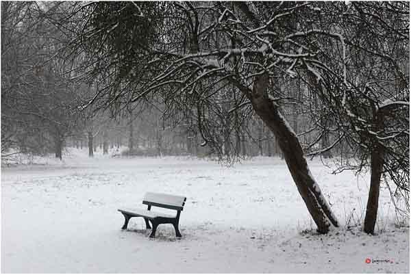 Một ngày mùa đông - Lê Uyên - Phương